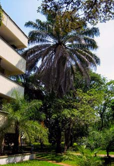 edificio ciencias